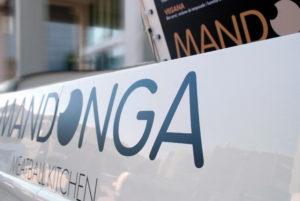 4 Vinilo Mandonga 300x201